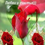 Цветы счастье и любовь