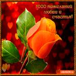 1000 пожеланий любви и счастья