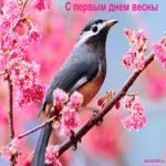 1 первый день весны