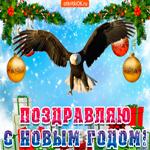2019 - год парящего орла