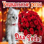Корзина роз для тебя