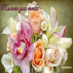 Анимационная цветы