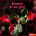 Открытка благодарю с розой