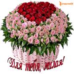 Большая корзина цветов