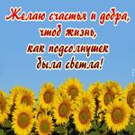 Будьте счастливы сегодня
