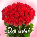 Букет красных роз для тебя