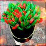 Букет тюльпанов с 8 марта
