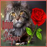 Чудесная открытка доброе утро с котиком и розой