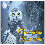 Чудесная зимняя открытка спокойной ночи