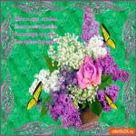 Цветы на фото - Это класс