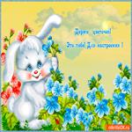 Цветок тебе для настроения