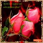 Дарю тебе прекрасные цветы
