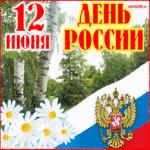 День России официальные поздравления
