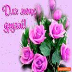 Для моих друзей цветы