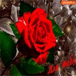Для тебя этот цветок