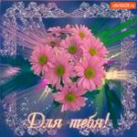 Для тебя хризантемы