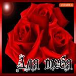 Блестящая открытка для тебя с розами