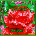 Для тебя от души розу дарю