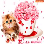Для тебя от милого котика