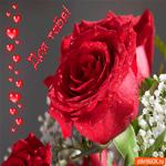 Для тебя роза вот эта