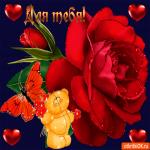 Для тебя сердечки и цветы
