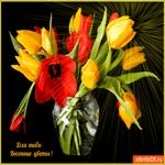 Для тебя весенние цветы