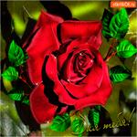 Для тебя вот эта роза