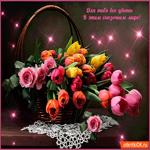 Для тебя все цветы в этом сказочном мире