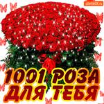 Для тебя 1001 роз от меня