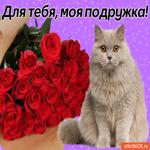 Для тебя, моя подружка