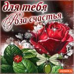 Для тебя роза счастья