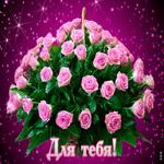 Для тебя шикарные розы