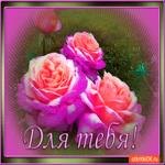 Для тебя свежие розы