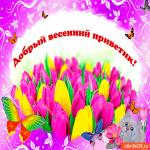 Добрый весенний приветик