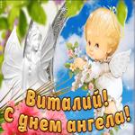 Дорогой Виталий, с днём ангела