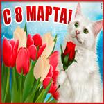 Душевная открытка с 8 марта