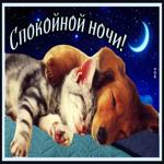 Душевная открытка спокойной ночи