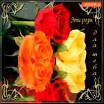 Эти яркие розы для тебя