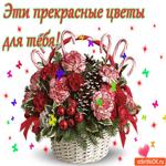Эти прекрасные  цветы для тебя