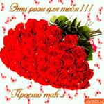 Эти розы для тебя, Просто так