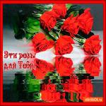 Эти розы только для тебя