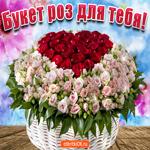 Этот большой букет роз только для тебя