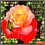 Я дарю тебе розу любя