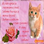 Желаю ярких и счастливых дней