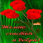 Желаю всем счастья и добра