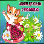Картинка для друзей с котиком