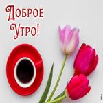 Картинка доброе утро с красными тюльпанами