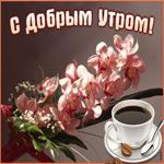 Картинка доброе утро с орхидеями