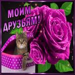 Картинка друзьям с фиолетовыми цветами