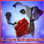 Картинка гиф День ветеринарного работника России